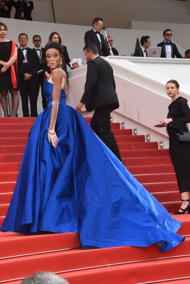 Red Carpet Arrivals: The 70th Annual Cannes Film Festival